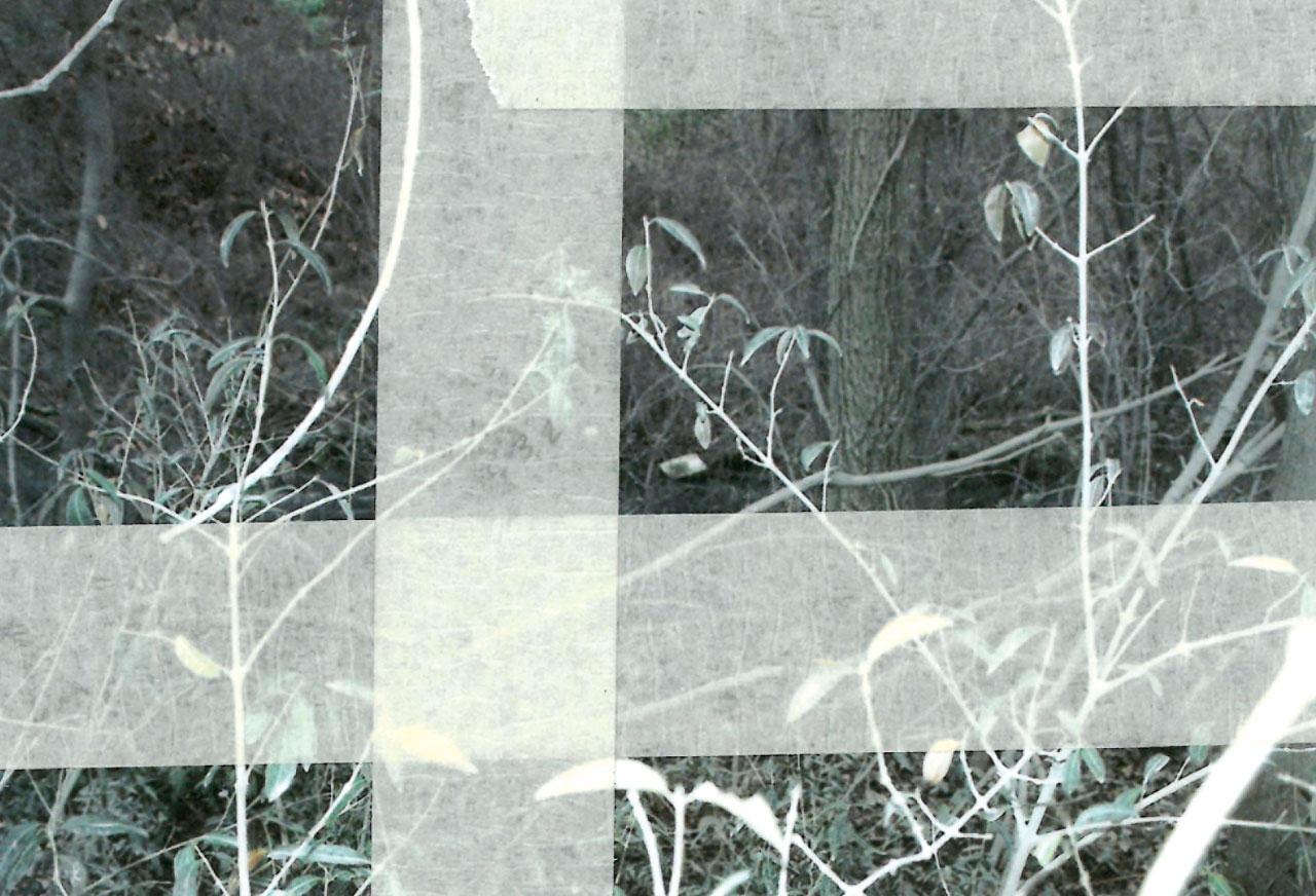 Barbara Geraci, Paysage (titre provisoire), photographie numérique, intervention sur l'impression, recadrage et annotations, 2021 © l'artiste